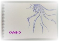 cambio_drawing_pledge